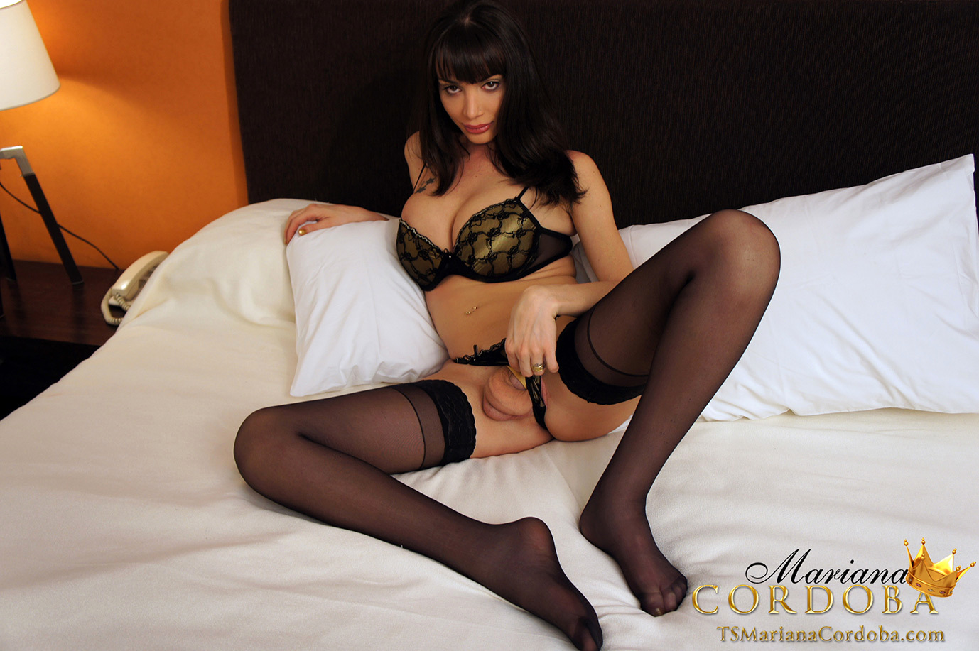 well hung and very busty shemale in black stockings flashes h
