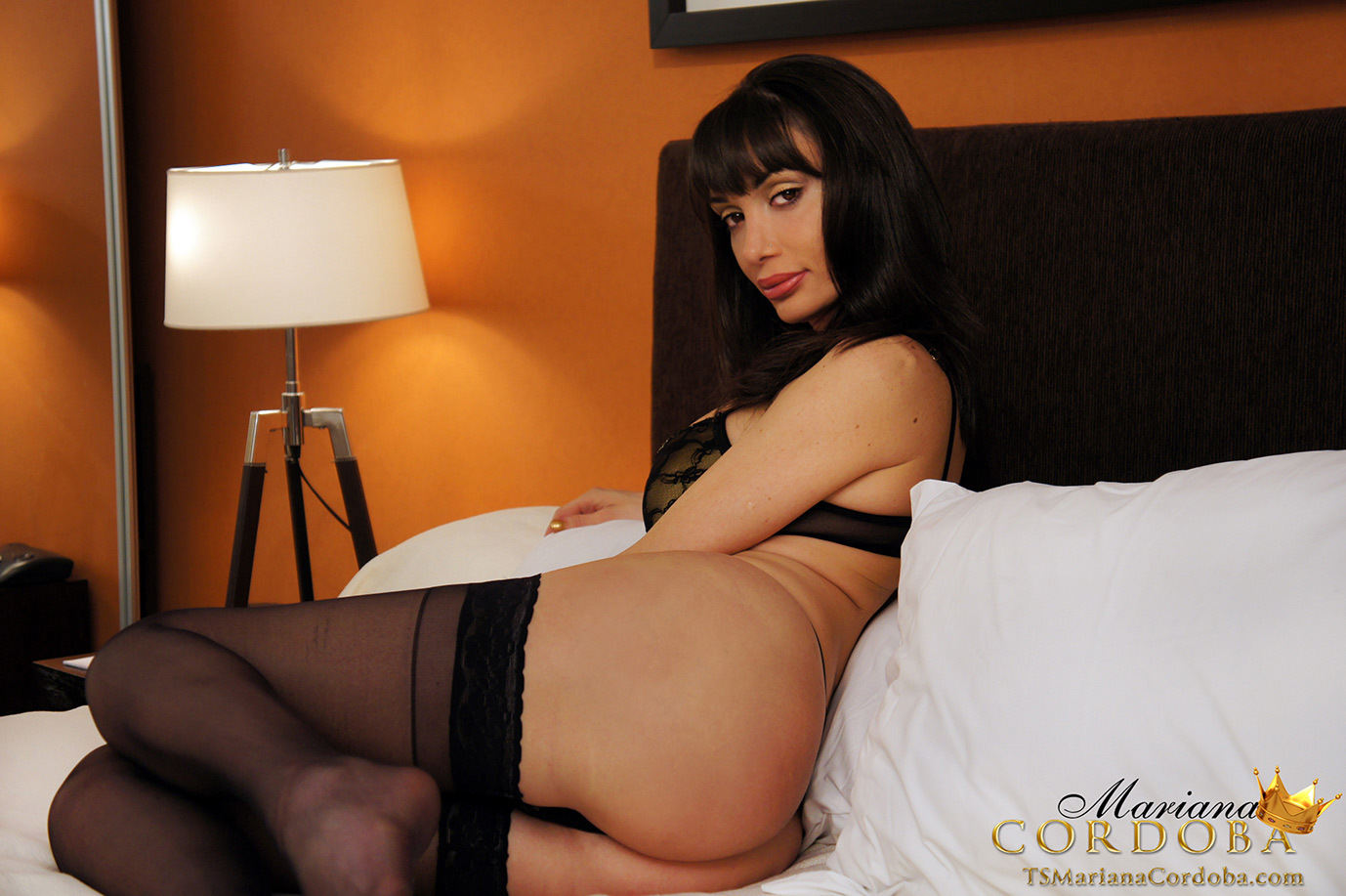 well hung t girl in black panties and stockings